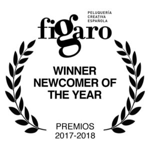 L.D.N. Colección Ganadora Premios Figaro 2017. Peluquero Revelación del Año
